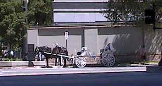 The Horse Carriage to be used for several scenes...